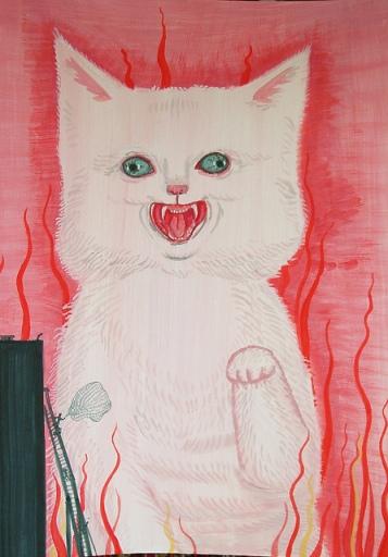 duzy kot aleksandra