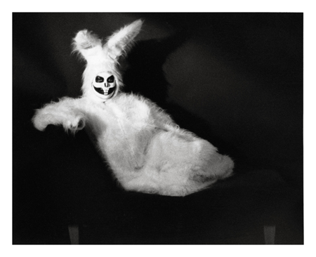 White_Rabbit_I_by_PerpetualFilth