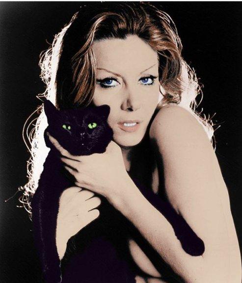 Ingrid cat